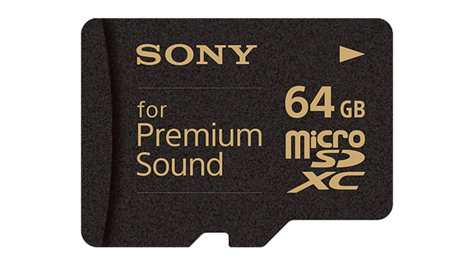 "Photo of Cardul SR-64HXA de la Sony la ""doar"" 160 de dolari, pentru playerul muzical de ""doar""… 1200 de dolari!"