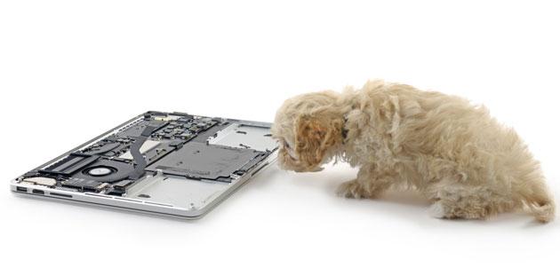 """Photo of Noul MacBook """"te pipăie"""" înapoi"""