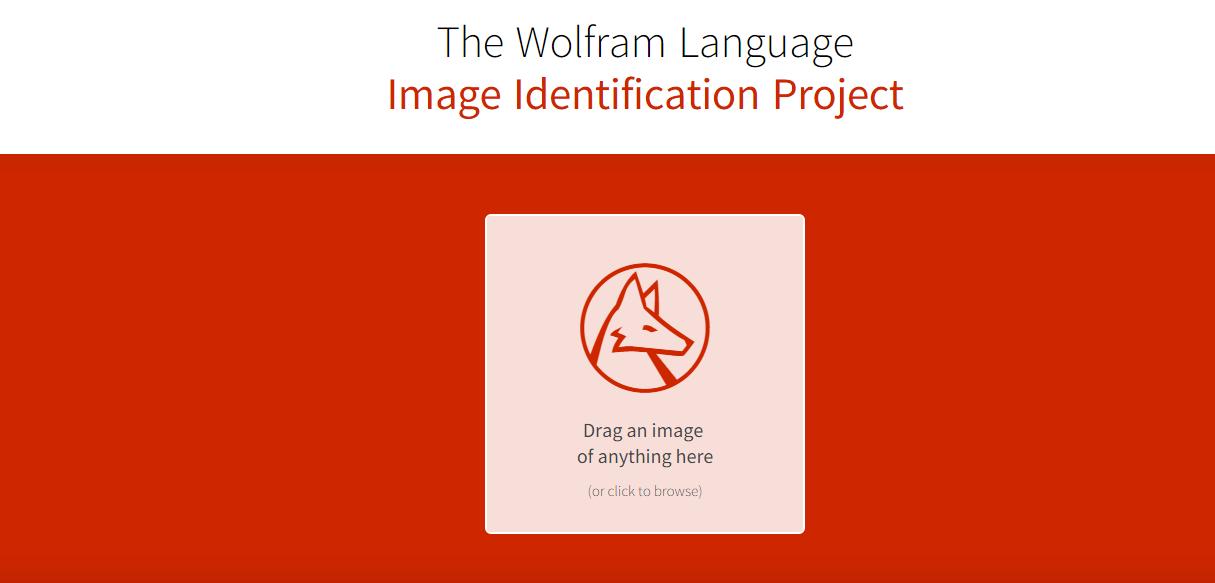 Photo of Imageidentify – Un site care indentifica obiecte in poze!