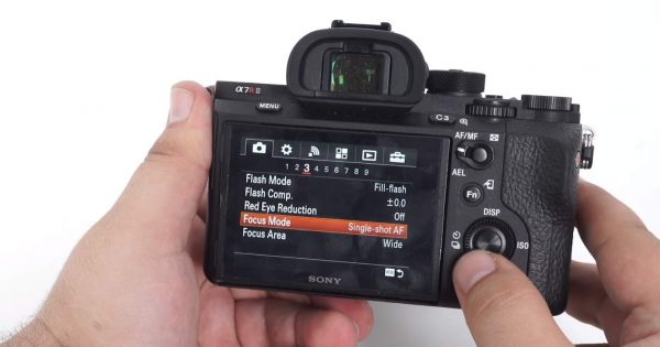 Sony Alpha A7R II 19