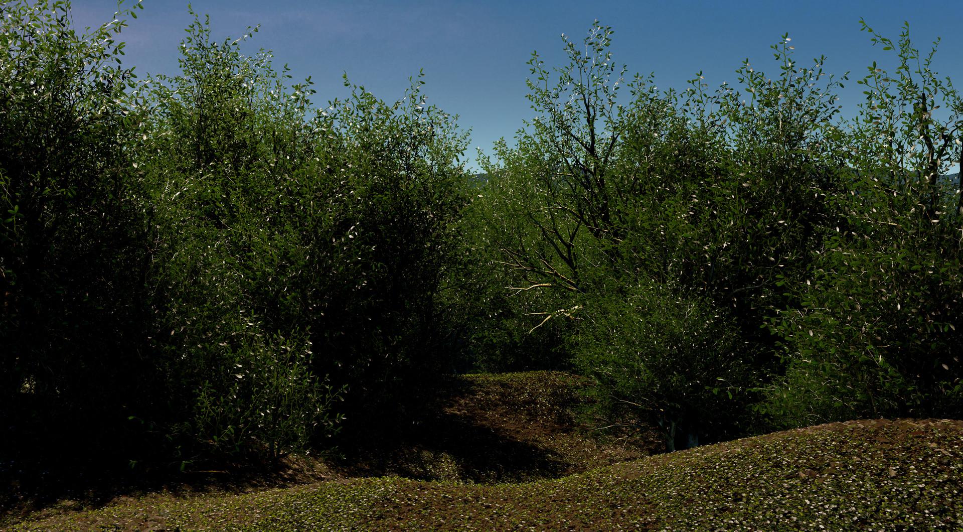 Photo of Care din aceste imagini sunt poze si care sunt facute in Unreal 4?