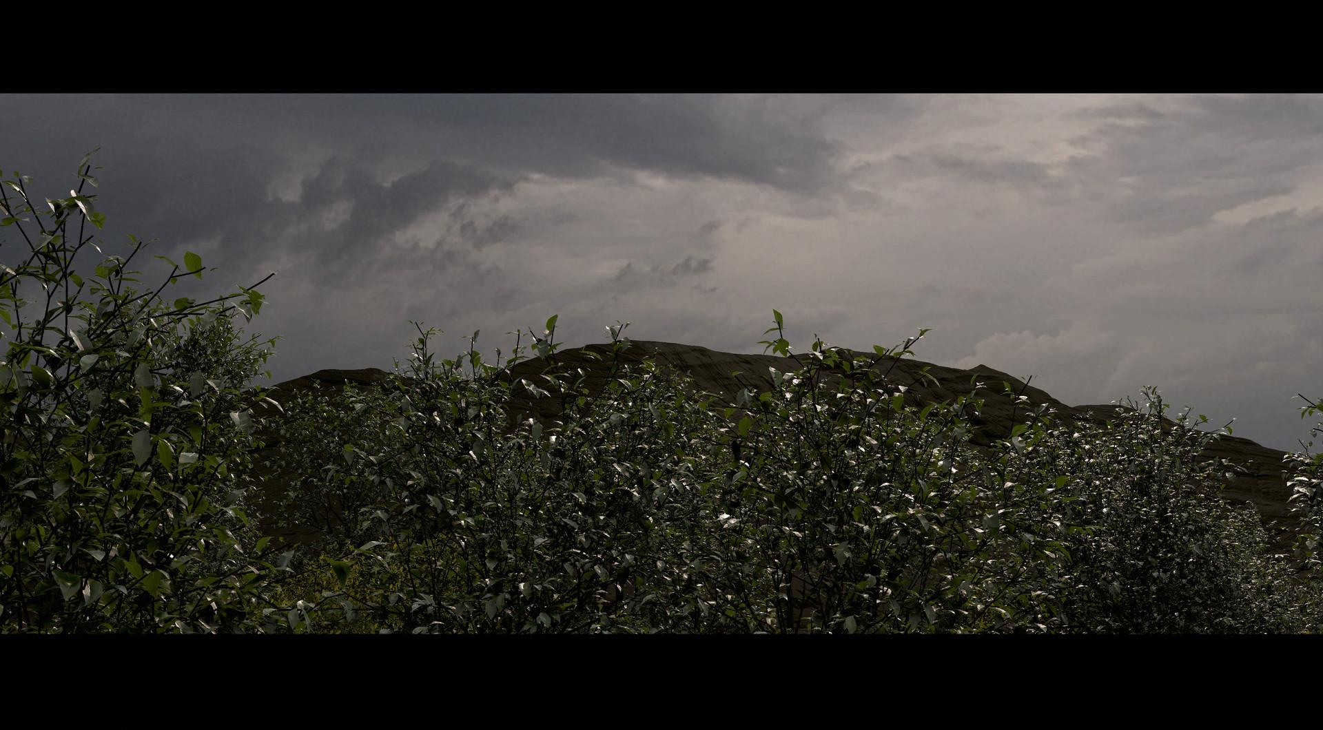 eoin-o-broin-foliage (2)