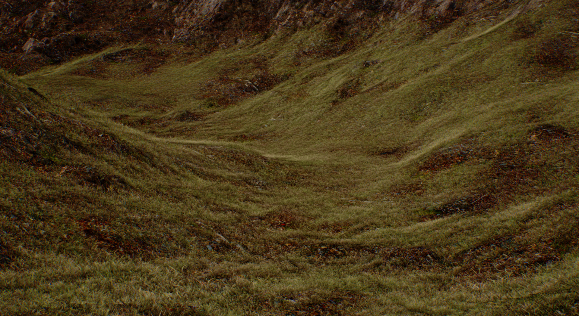eoin-o-broin-grass-brigher-2
