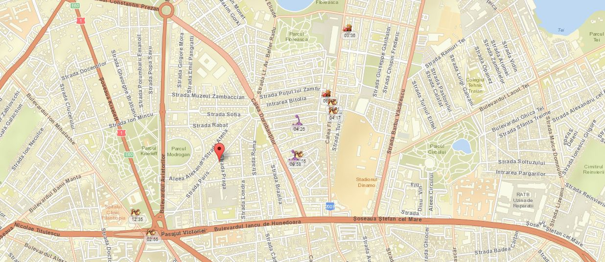 Photo of Acum poti vedea unde sunt toti Pokemonii din oras