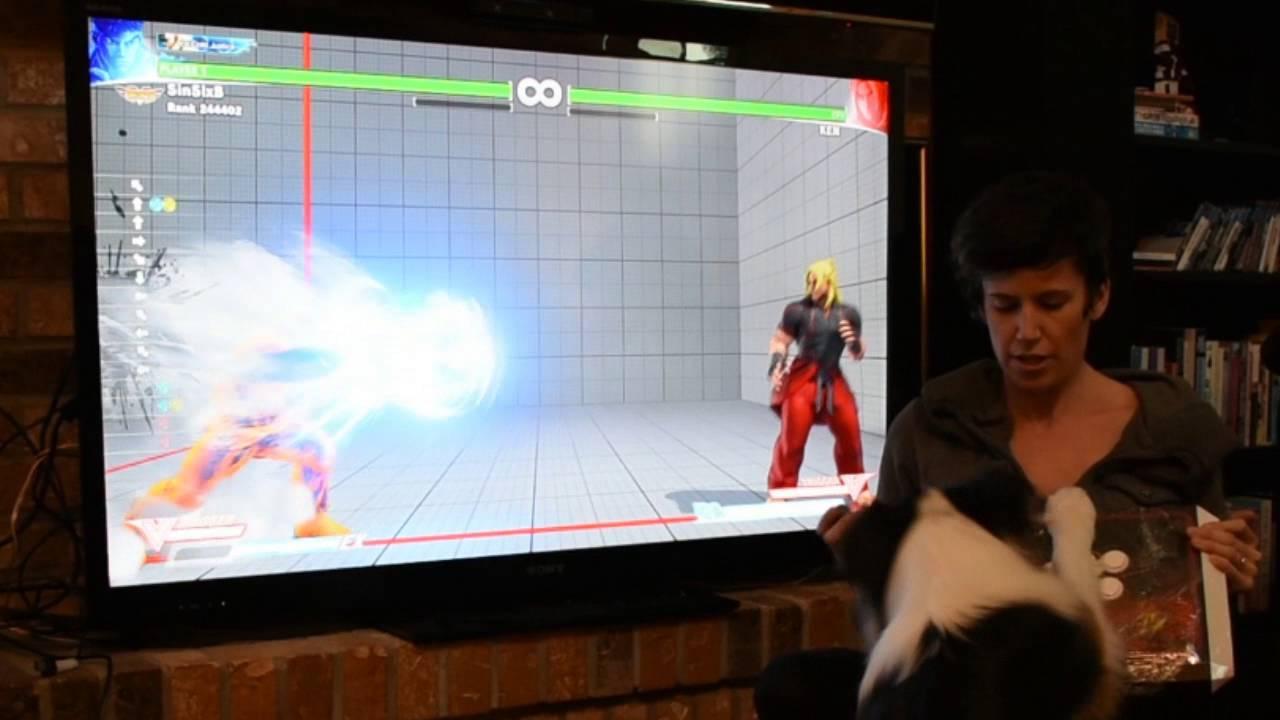 Photo of Un câine joacă Street Fighter 5 mai bine ca unii oameni