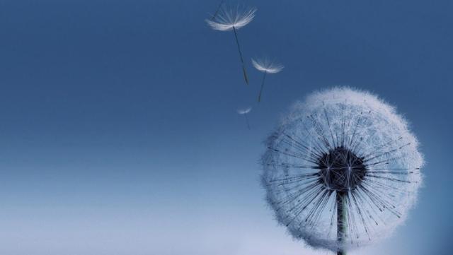 Samsung a lansat in Europa aparatele de aer condiționat revoluționare Wind-Free