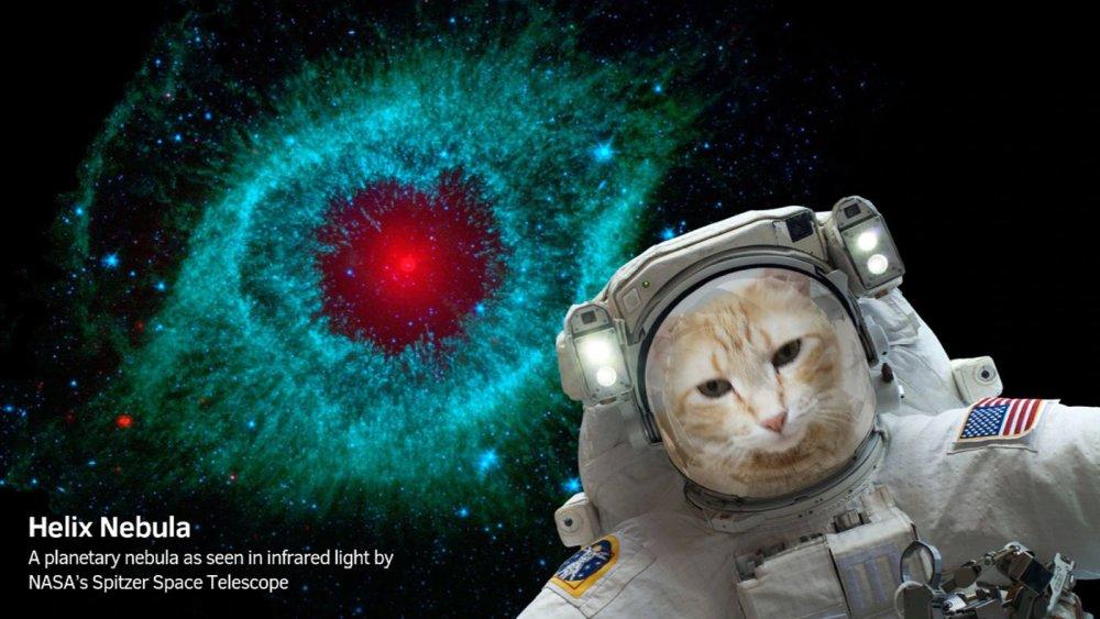 Photo of NASA îți dă acum posibilitatea să-ți faci selfies din spațiu