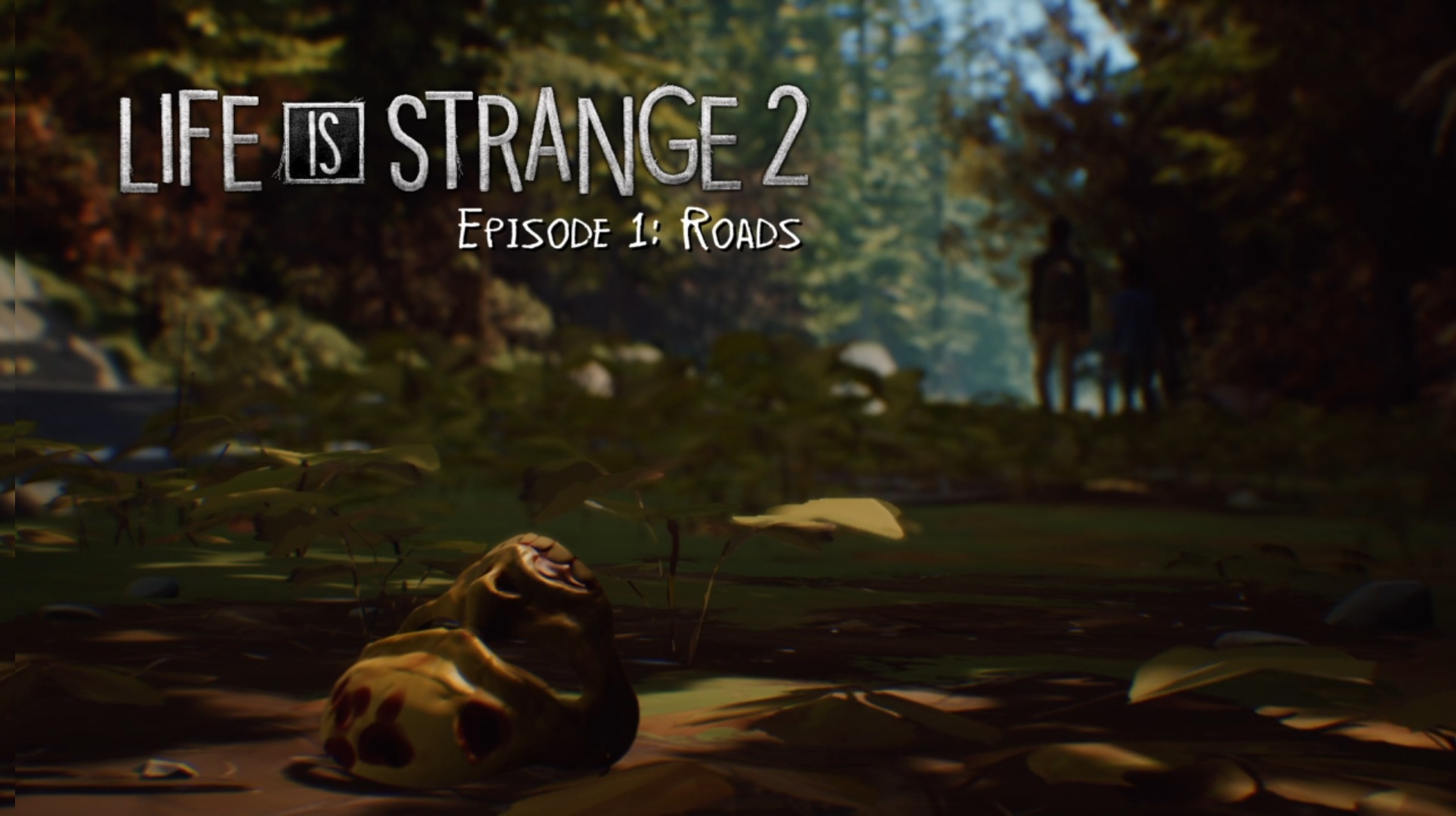 Photo of Life is Strange 2: Roads review (Episodul 1)