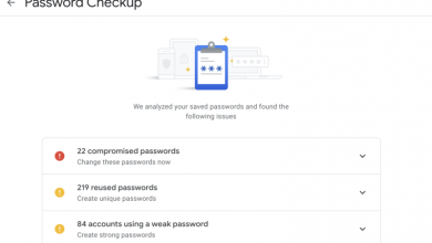 google password checkup manager