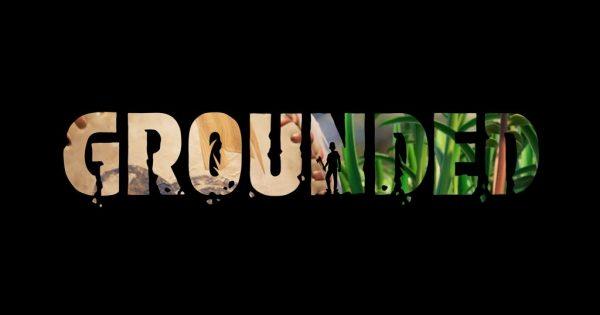 Grounded va fi lansat pe Steam in luna Iulie a acestui an