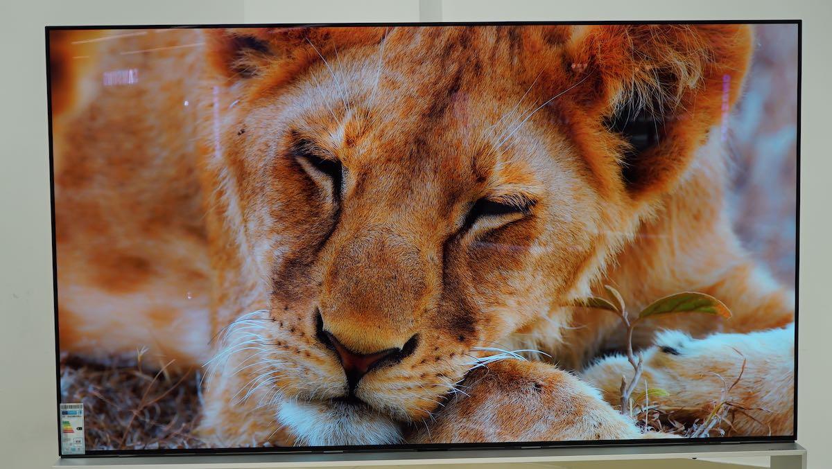 LG 88 ZX 8K OLED Panel