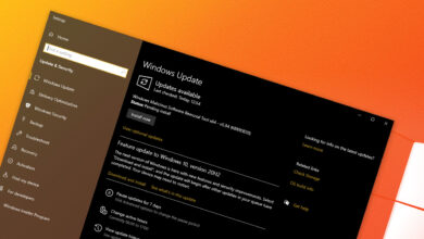 Microsoft Windows 10 Feature Experience Pack