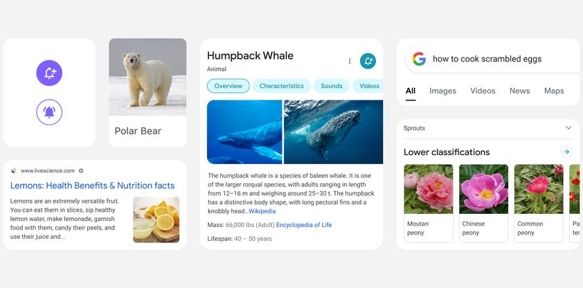 Google Search Mobile 2021 Redesign